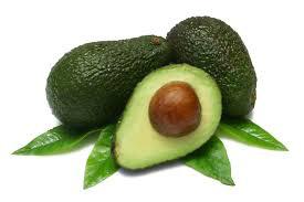 plodovi avokada