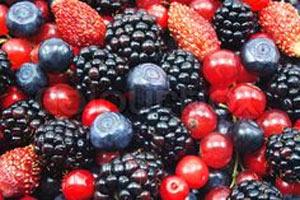 hrana za dugovecnost