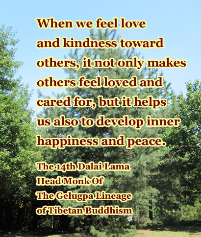 Loving Kindness Quotes Captivating How To Meditate Buddhist Lovingkindness Meditation  Meditation