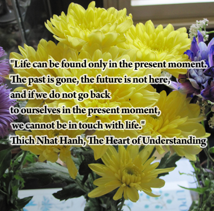 meditation quote suitable for beginners
