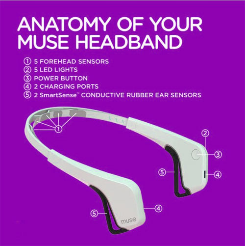A Better Way to Meditate — Muse, The Brain Sensing Headband