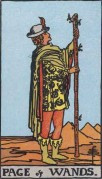 the page of wands minor arcana card