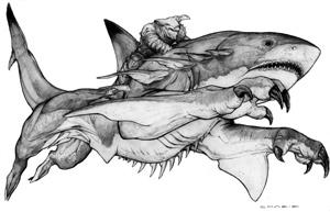 panther shark