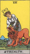 the strength tarot card
